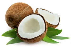 producer of coconut